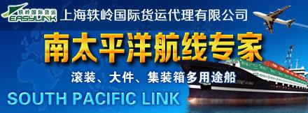 上海轶岭国际货运代理有限公司
