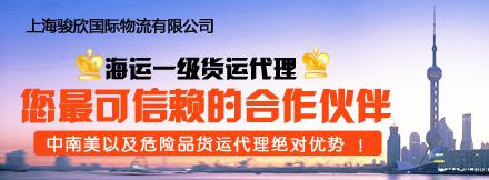 上海骏欣国际物流有限公司