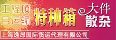 上海逸昂国际货运代理有限公司