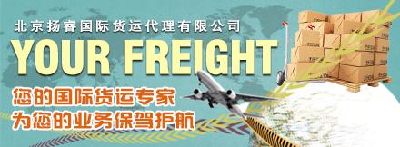 北京扬睿国际货运代理有限公司