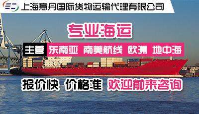 上海意丹国际货物运输代理有限公司