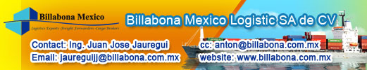 BILLABONA MEXICO LOGISTIC SA DE CV