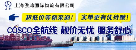 上海傲鴻國際物流有限公司