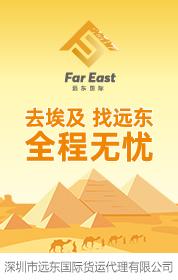 深圳市远东国际货运代理有限公司