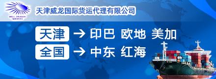 天津威龙国际