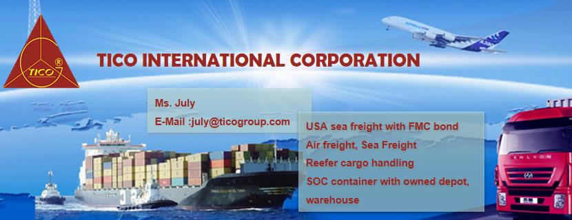 TICO INTERNATIONAL CORPORATION